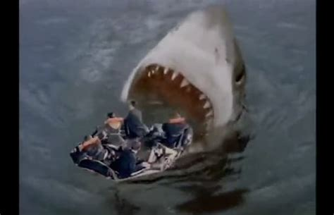 Gallery: The Best Shark Attacks In Movies   Complex